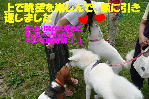 f0121712_818352.jpg