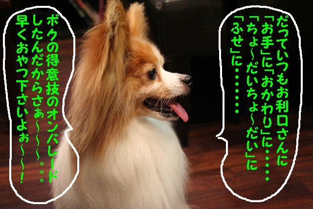 b0130018_13434064.jpg