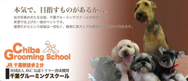 千葉グルーミングスクール