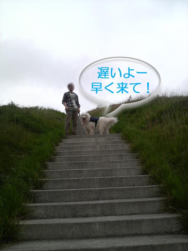 b0146024_1452389.jpg