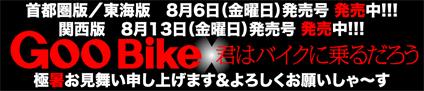 藤嶋 秀行 & Harley-Davidson FXRS(2010 0630)_f0203027_7251398.jpg