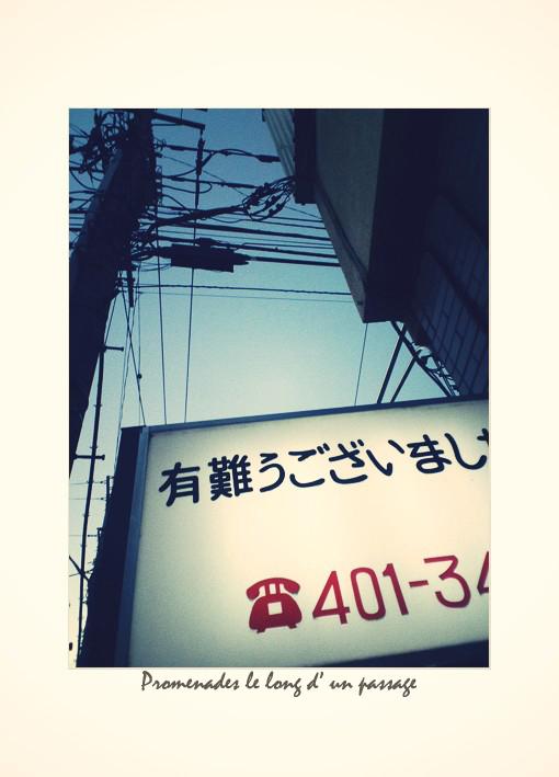 熱帯夕_a0049142_6544867.jpg