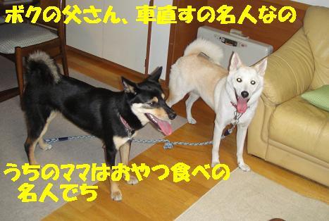 c0211642_024122.jpg
