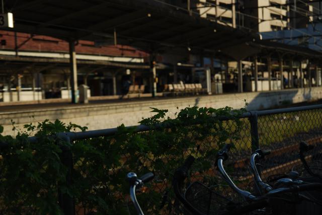 尾道 snap_b0146751_2004618.jpg