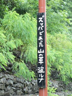青荷温泉 らんぷの宿_e0158653_22304749.jpg