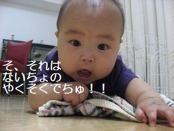 b0133861_16324376.jpg