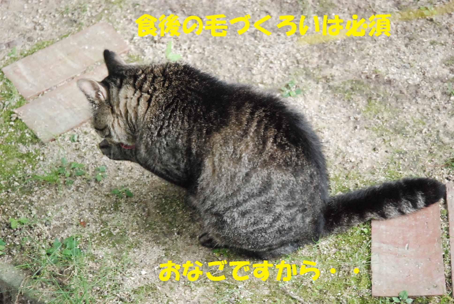 c0109663_1302717.jpg