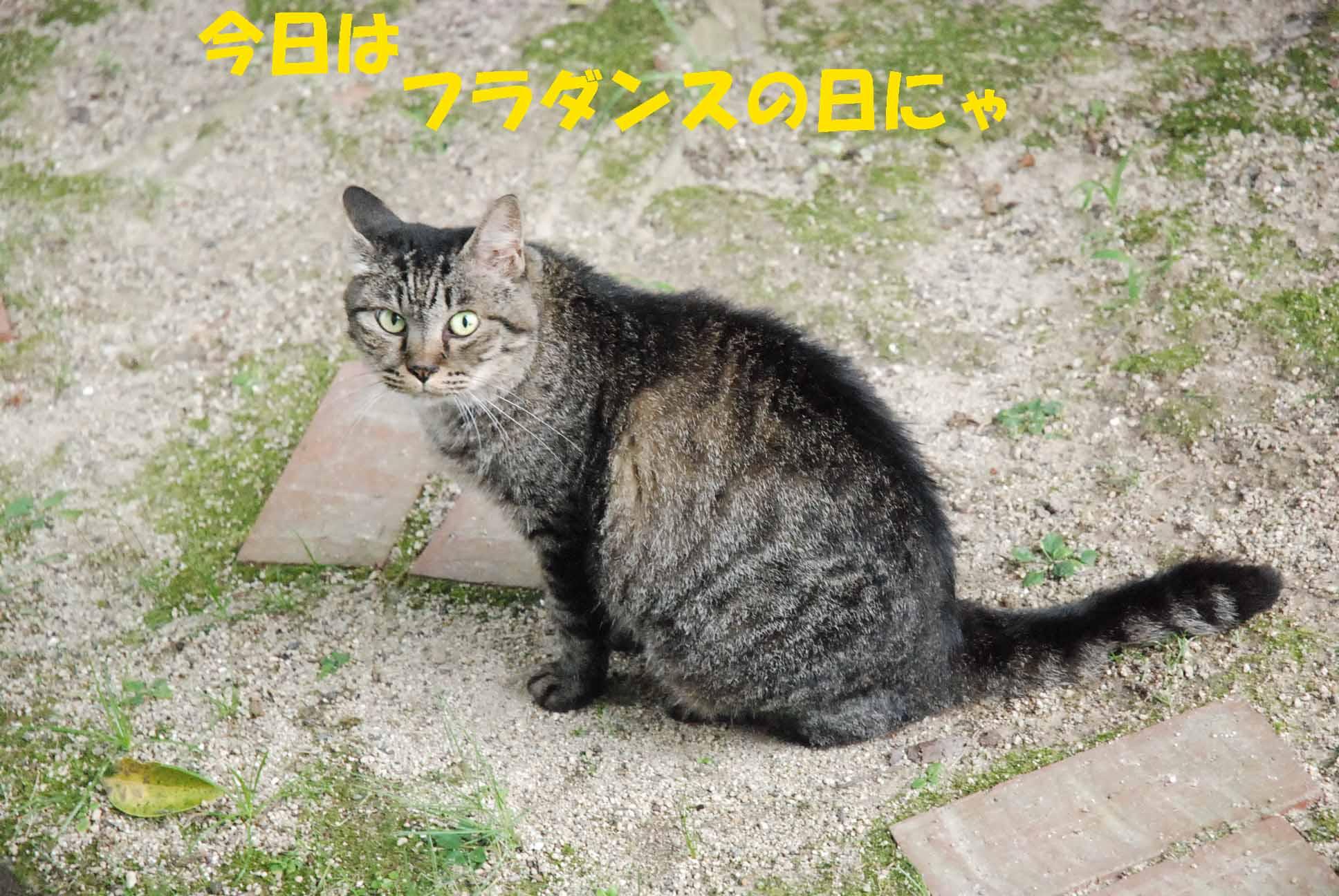 c0109663_1313316.jpg