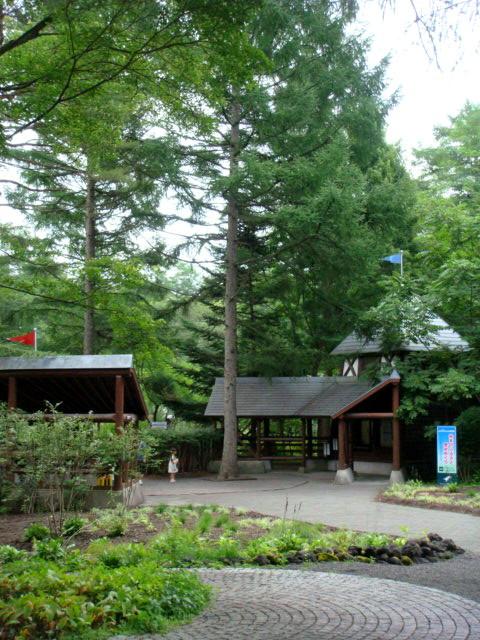 ◆ポール・スミザーの庭・・・・・・軽井沢 『 ピクチャレスク・ガーデン』_e0154682_1263216.jpg
