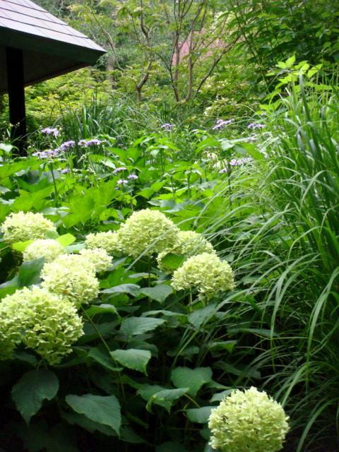 ◆ポール・スミザーの庭・・・・・・軽井沢 『 ピクチャレスク・ガーデン』_e0154682_1283797.jpg