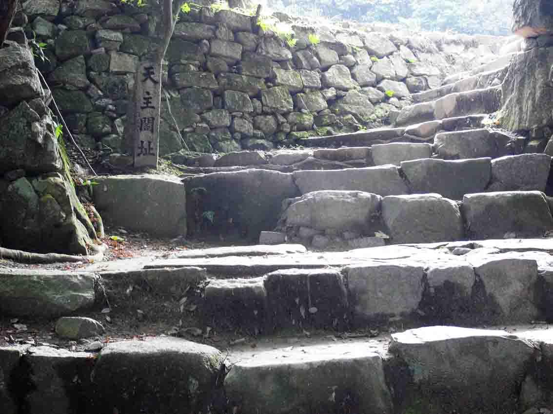 安土城跡とハンミョウ -滋賀その4-_d0163696_18101981.jpg
