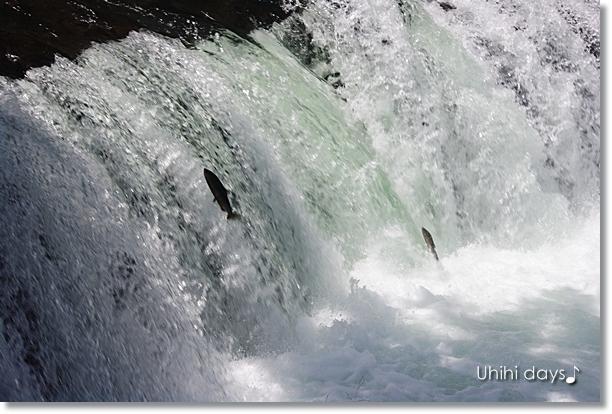 美幌峠 と さくらの滝_f0179404_2275013.jpg