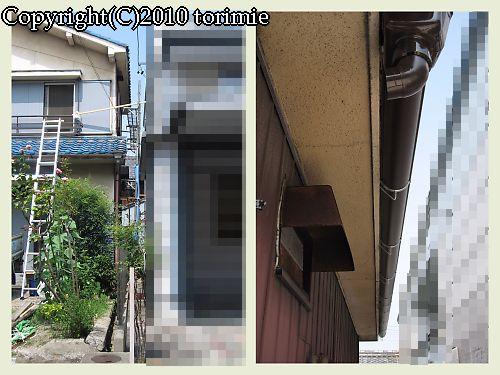 b0036205_2213140.jpg