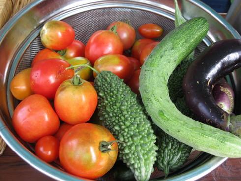 「柿農園」にて~_a0125419_9215423.jpg