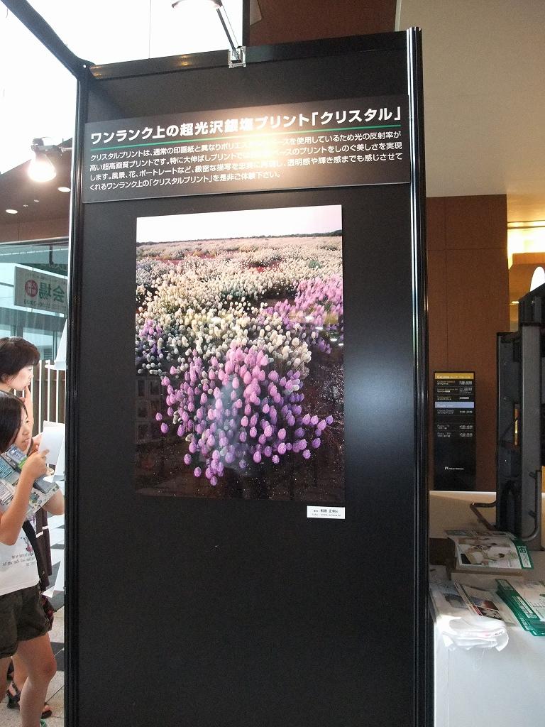 富士フイルム 1000人の写真展に参加しています_f0050534_1857474.jpg