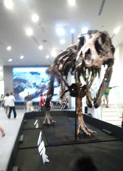 恐竜ラボ_c0199544_13243627.jpg