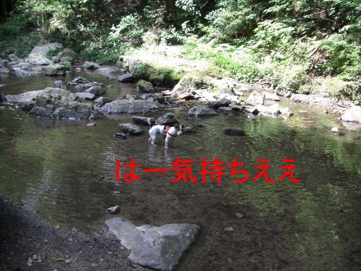 f0053952_17453119.jpg
