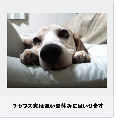 b0098660_12211519.jpg
