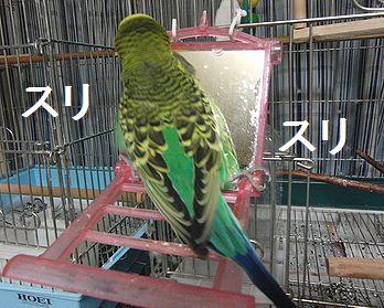 f0196665_0252977.jpg