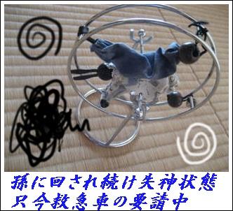 f0175279_1014861.jpg
