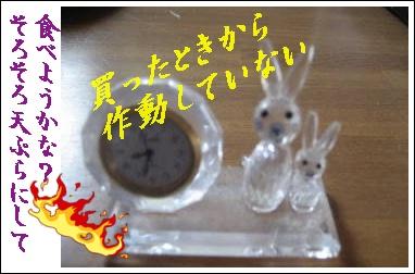 f0175279_959151.jpg