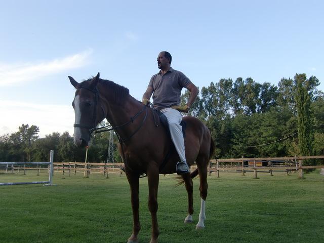 馬に乗る_f0226179_8151093.jpg