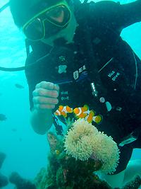 ラチャヤイ島で体験ダイビング _f0144385_20161644.jpg