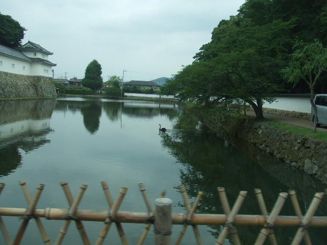 関西キャンペーンの写真をご覧下さい。_e0119092_1039952.jpg