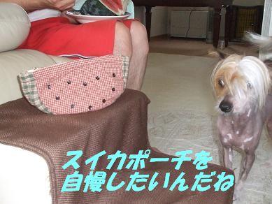 f0179203_72383.jpg