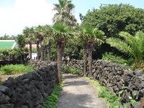 ♪ チェジュ島からピアン島 ♪_a0115924_20391458.jpg