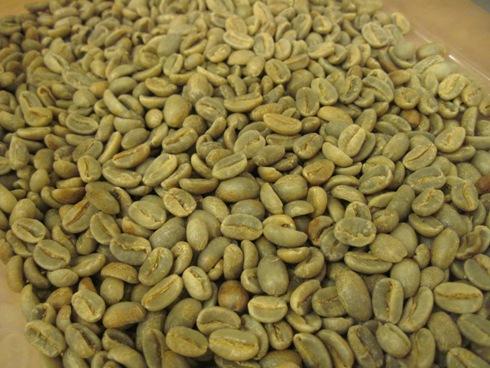 スペシャルな自家焙煎コーヒー「ユナイトコーヒー」_b0140235_025872.jpg