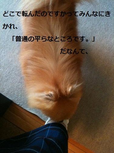 b0182968_14274085.jpg