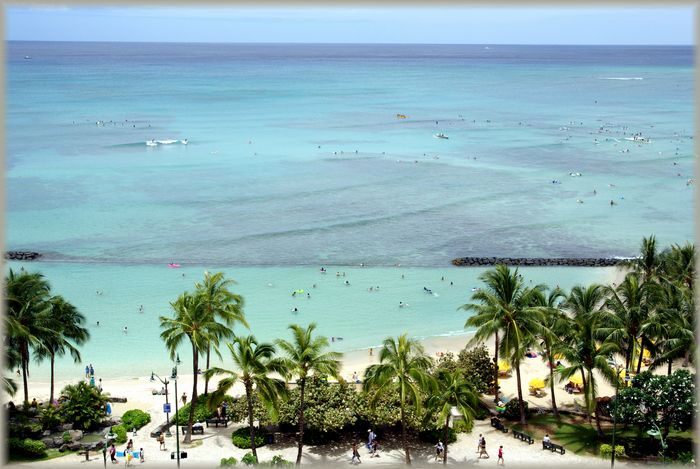 ハワイ旅行記 6_b0093088_8174226.jpg
