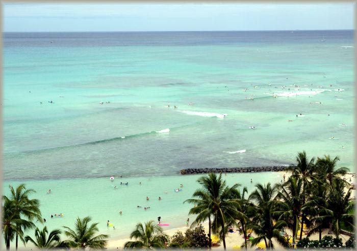 ハワイ旅行記 6_b0093088_818109.jpg