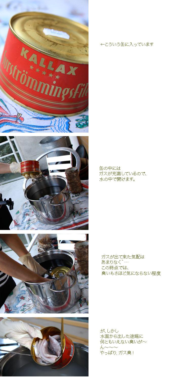 b0119705_529740.jpg