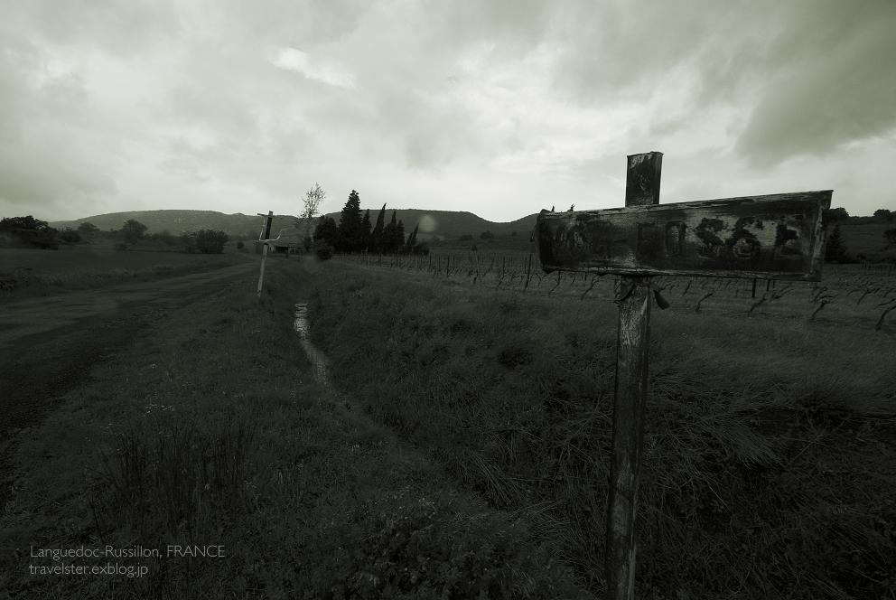 南仏の車窓から_b0108109_20515219.jpg