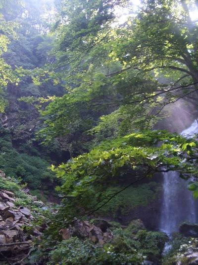 霧降隠れ三滝_c0207638_2353484.jpg