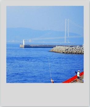 須磨の海釣り公園_b0165872_20545446.jpg