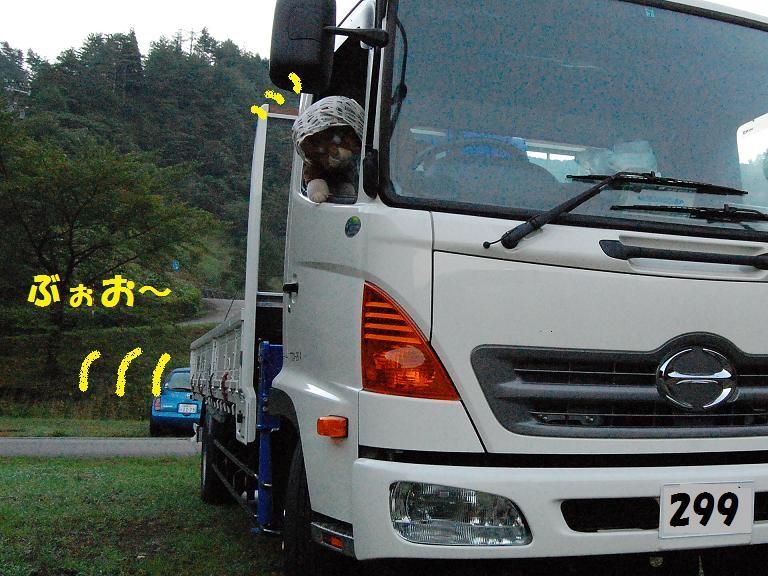 b0059978_205331.jpg