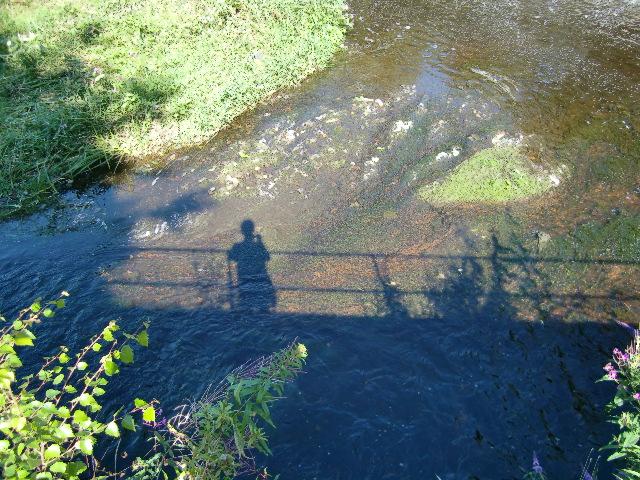 穏やかな秋の土曜日散歩_c0027188_450287.jpg