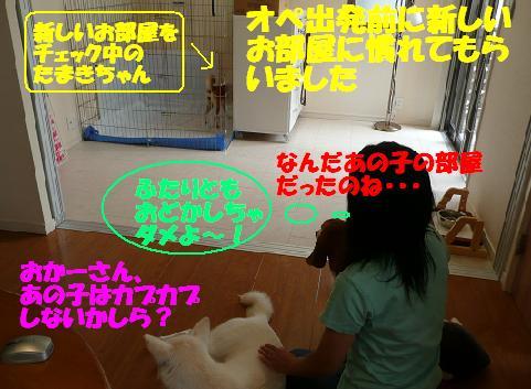 f0121712_8421072.jpg