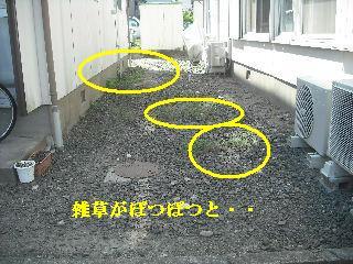 f0031037_19582820.jpg