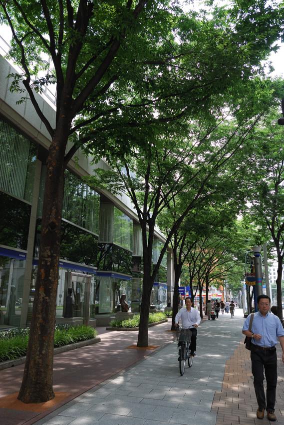 暑い名古屋も_c0171945_2055561.jpg