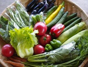 8月5週目の野菜セット不定期便のお知らせ  _c0110869_21475020.jpg