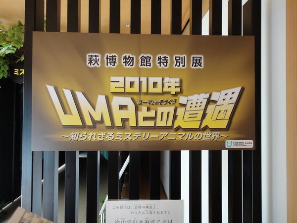 UMA展と萩花火大会_c0150273_001929.jpg