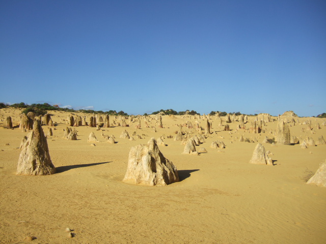 オーストラリアの旅 No.7  -パース近郊ー_e0024094_15434281.jpg