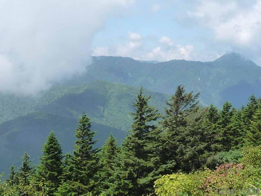 山、登りました〜_c0223095_16191556.jpg