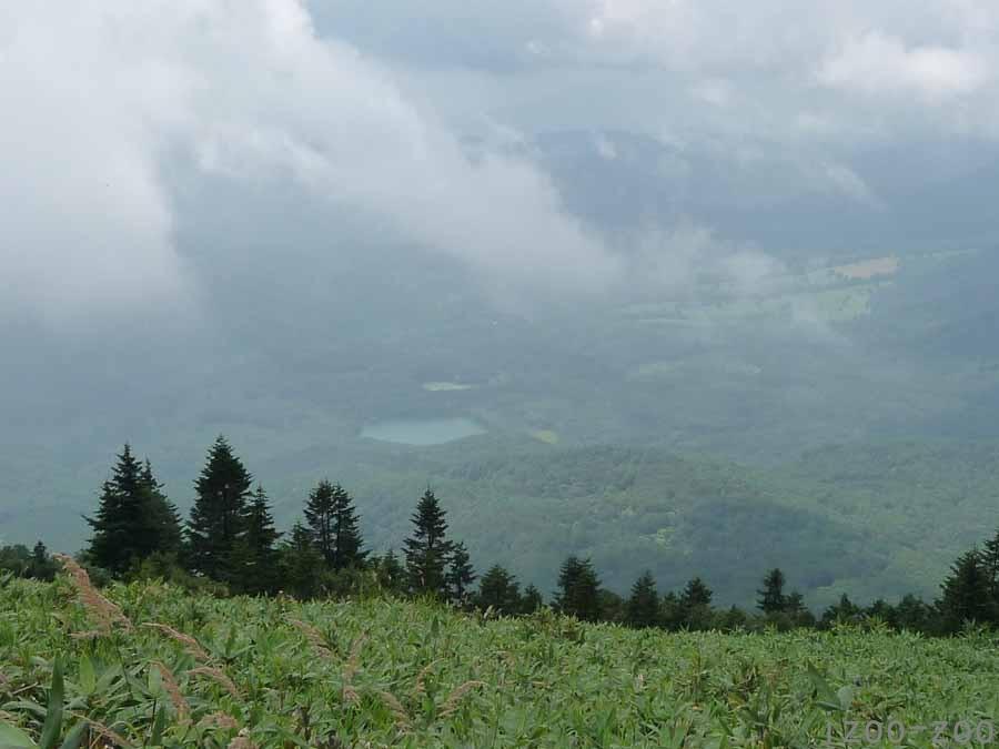 山、登りました〜_c0223095_16213167.jpg