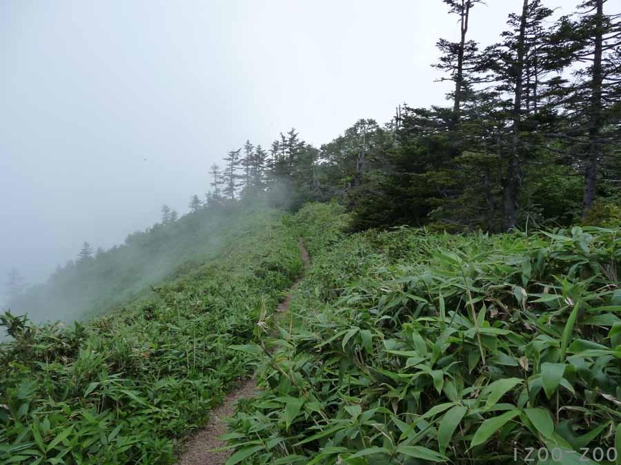 山、登りました〜_c0223095_1625176.jpg