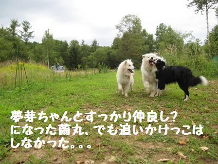 f0212597_1664550.jpg